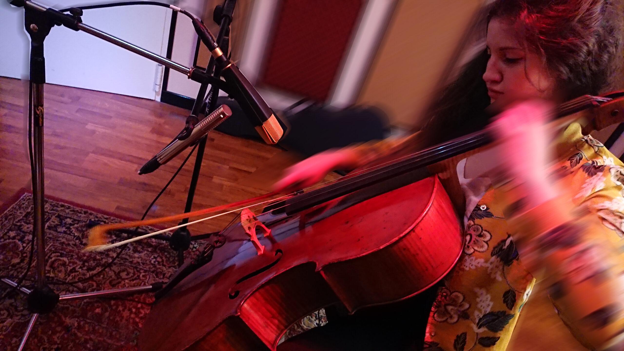 DSC_violoncello OK
